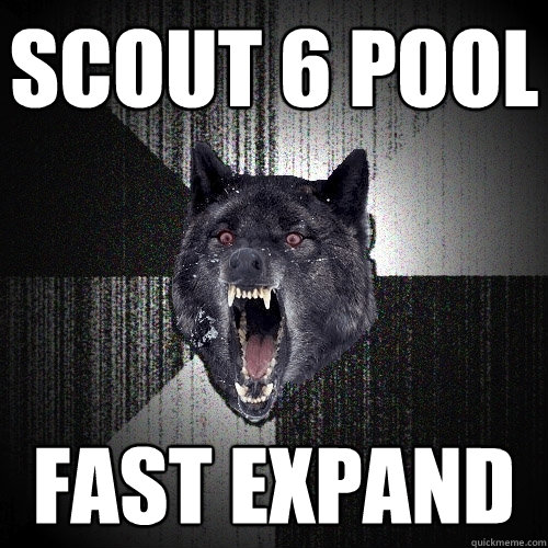 scout 6 pool fast expand - Insanity Wolf