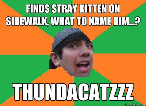 finds stray kitten on sidewalk what to name him thundac - For-real Nikhil