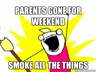 parents gone for weekend smoke all the things - All The Things
