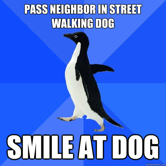 pass neighbor in street walking dog smile at dog - Socially Awkward Penguin