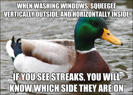 when washing windows squeegee vertically outside and horiz - Actual Advice Mallard