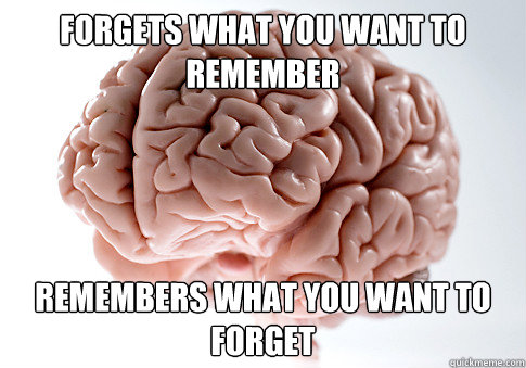 forgets what you want to remember remembers what you want to - Scumbag Brain