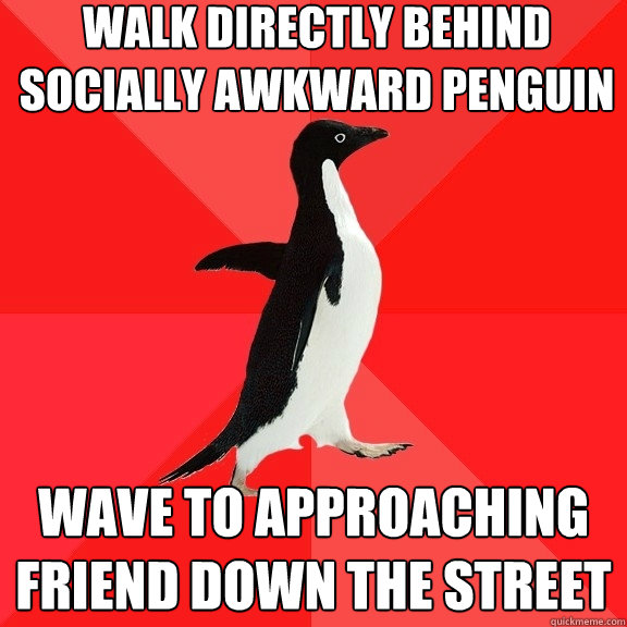 walk directly behind socially awkward penguin wave to approa - Socially Awesome Penguin