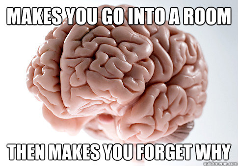 makes you go into a room then makes you forget why - Scumbag Brain