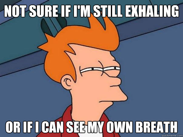 not sure if im still exhaling or if i can see my own breath - Futurama Fry