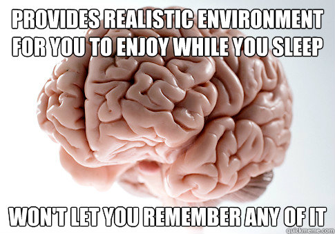 provides realistic environment for you to enjoy while you sl - Scumbag Brain