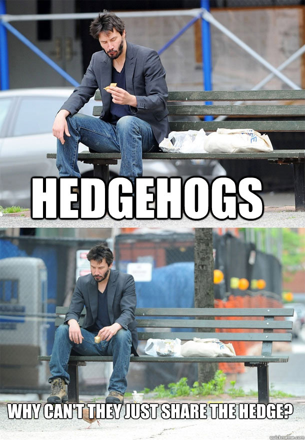 hedgehogs why cant they just share the hedge - Sad Keanu