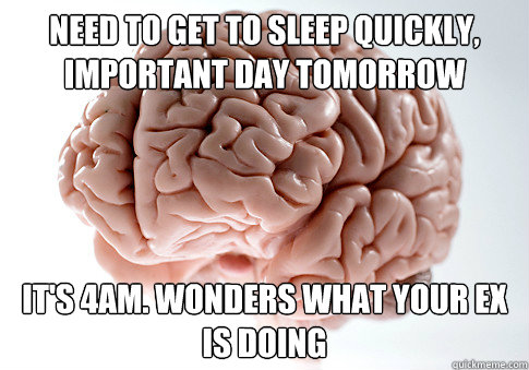 need to get to sleep quickly important day tomorrow its 4a - Scumbag Brain