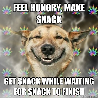 feel hungry make snack get snack while waiting for snack to - Stoner Dog
