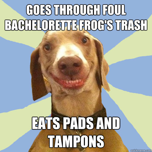 goes through foul bachelorette frogs trash eats pads and ta - Disgusting Doggy
