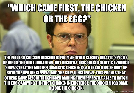 which came first the chicken or the egg the modern chick - Dwight
