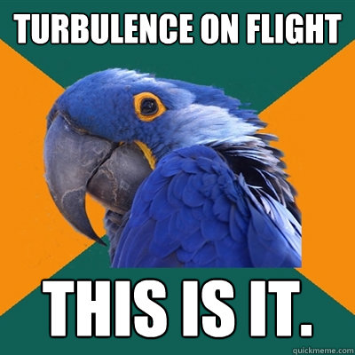 turbulence on flight this is it - Paranoid Parrot