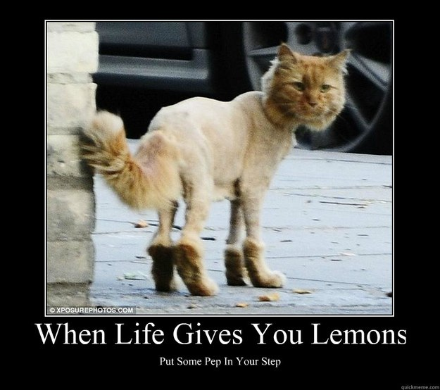 when life gives you lemons put some pep in your step motivational poster. Black Bedroom Furniture Sets. Home Design Ideas