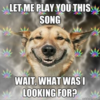 let me play you this song wait what was i looking for - Stoner Dog