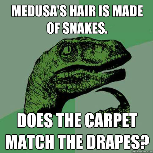 medusas hair is made of snakes does the carpet match the d - Philosoraptor