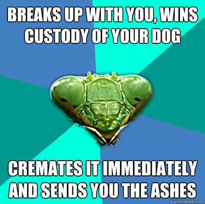 breaks up with you wins custody of your dog cremates it imm - Crazy Girlfriend Praying Mantis