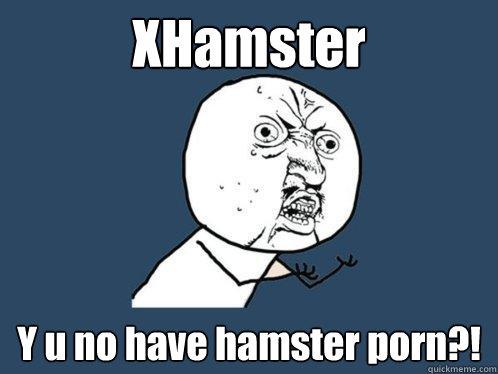 xhamster y u no have hamster porn - Y U No