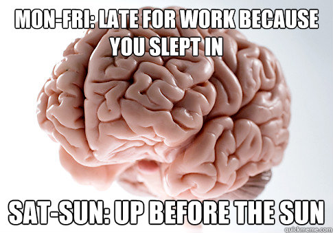 monfri late for work because you slept in satsun up befo - Scumbag Brain