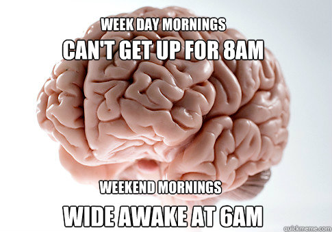 cant get up for 8am wide awake at 6am week day mornings wee - Scumbag Brain