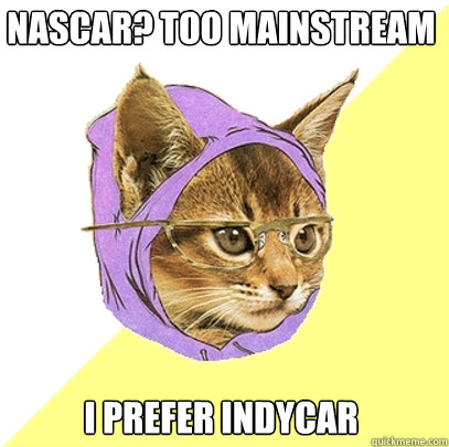 nascar too mainstream i prefer indycar - Hipster Kitty