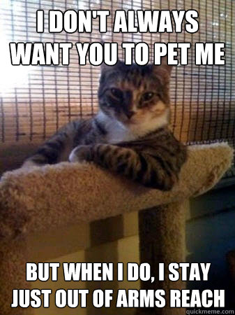 i dont always want you to pet me but when i do i stay just - The Most Interesting Cat in the World