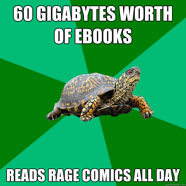 60 gigabytes worth of ebooks reads rage comics all day - Torrenting Turtle