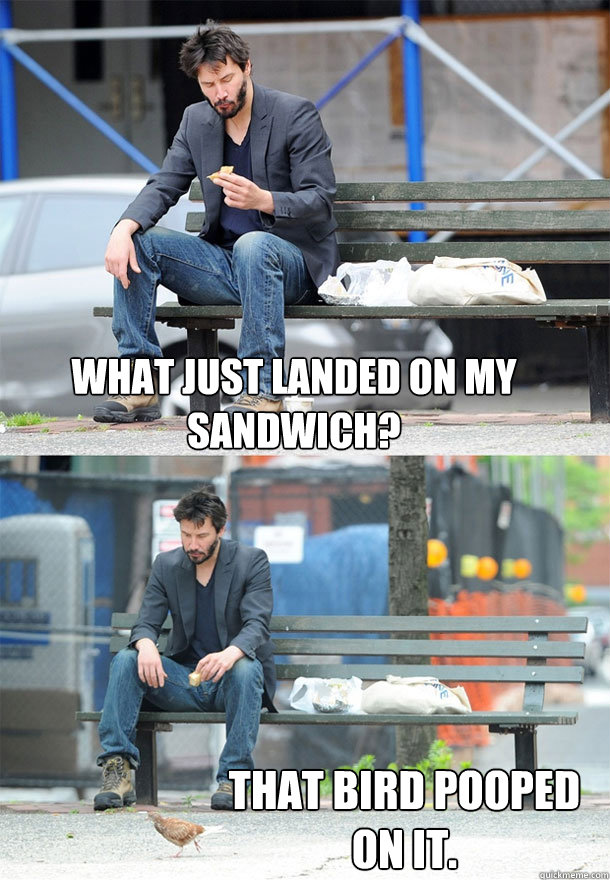 what just landed on my sandwich that bird pooped on it - Sad Keanu