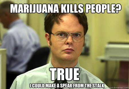 marijuana kills people true i could make a spear from the s - Schrute