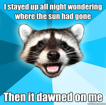 i stayed up all night wondering where the sun had gone then  - Lame Pun Coon