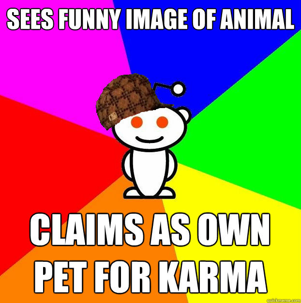 sees funny image of animal claims as own pet for karma - Scumbag Redditor