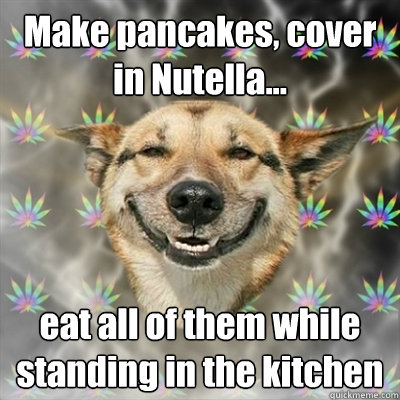make pancakes cover in nutella eat all of them while sta - Stoner Dog
