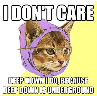 i dont care deep down i do because deep down is undergroun - Hipster Kitty