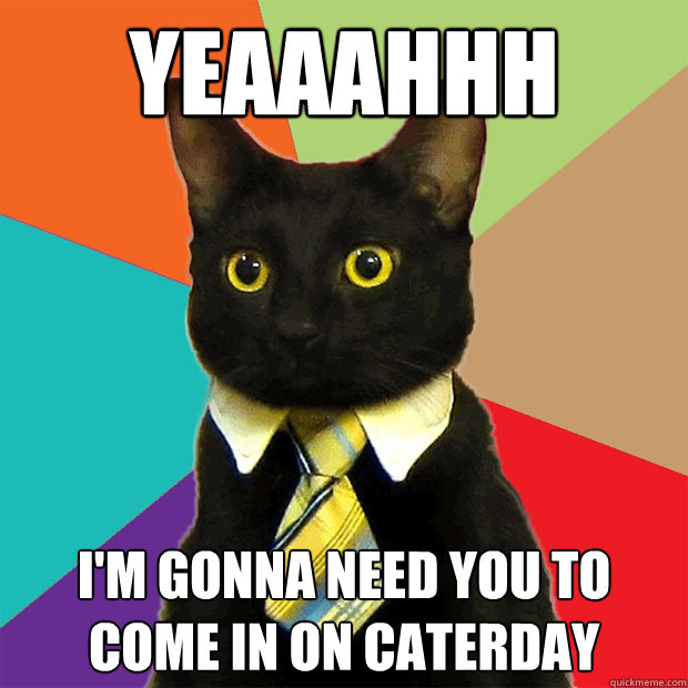 yeaaahhh im gonna need you to come in on caterday - Business Cat