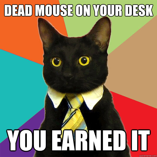 dead mouse on your desk you earned it - Business Cat