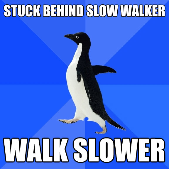 stuck behind slow walker walk slower - Socially Awkward Penguin