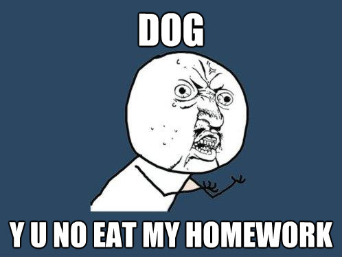 dog y u no eat my homework - Y U No
