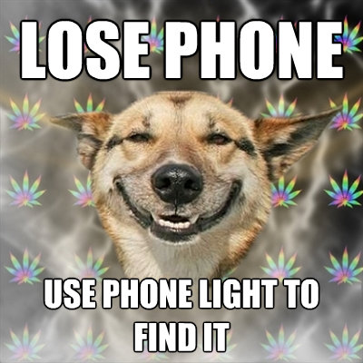 lose phone use phone light to find it - Stoner Dog