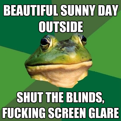 beautiful sunny day outside shut the blindsfucking screen  - Foul Bachelor Frog