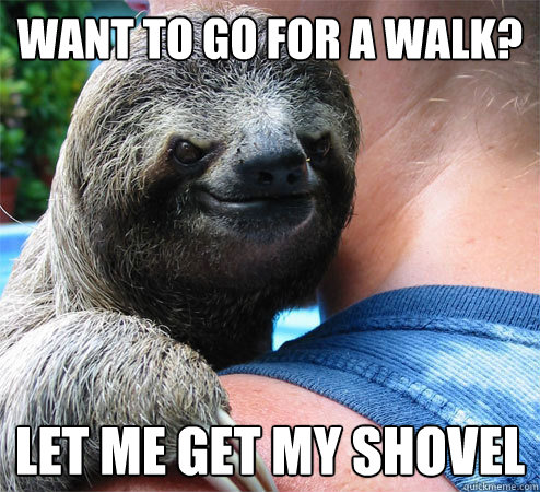 want to go for a walk let me get my shovel - Suspiciously Evil Sloth