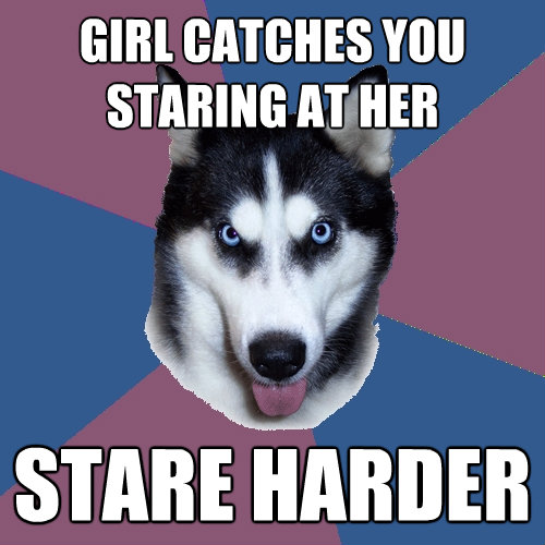 girl catches you staring at her stare harder - Creeper Canine