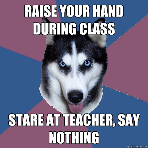 raise your hand during class stare at teacher say nothing - Creeper Canine