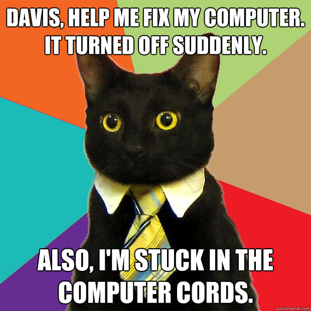 davis help me fix my computer it turned off suddenly also - Business Cat