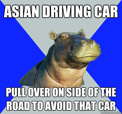 asian driving car pull over on side of the road to avoid tha - Skeptical Hippo