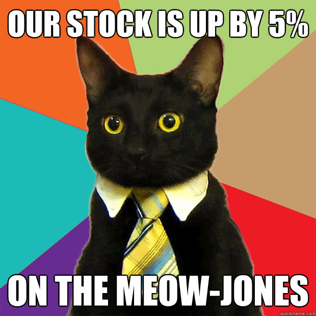 our stock is up by 5 on the meowjones - Business Cat