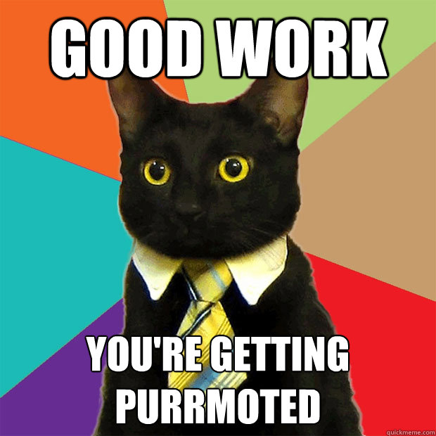 Funny Cat Meme About Work : Good work youre getting purrmoted business cat