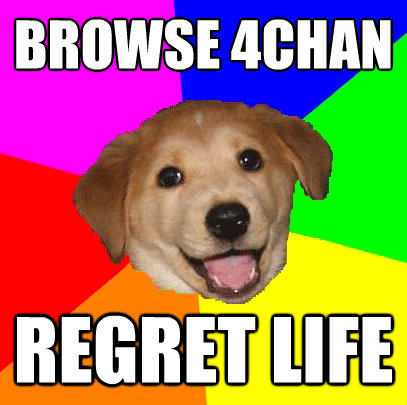 browse 4chan regret life - Advice Dog