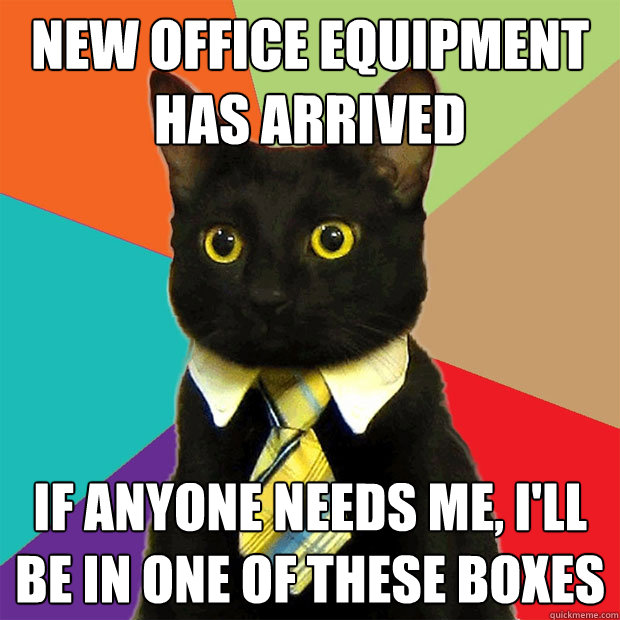 new office equipment has arrived if anyone needs me ill be - Business Cat