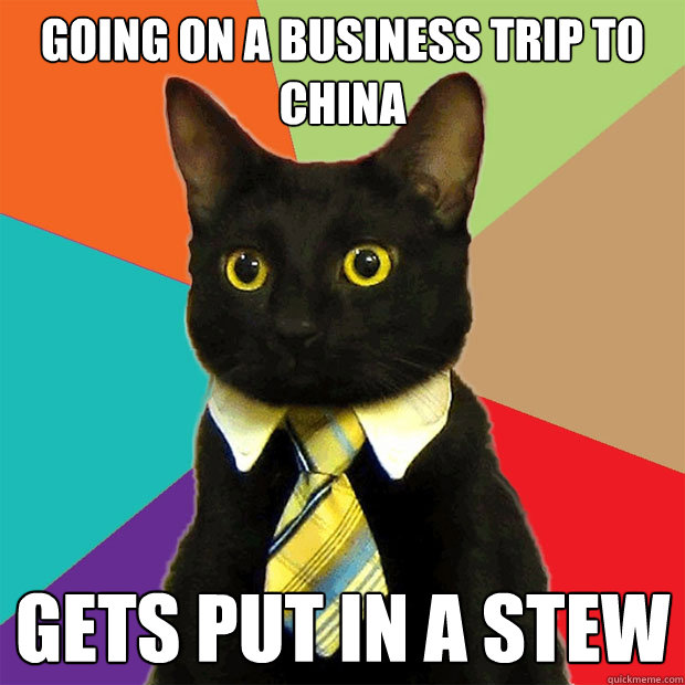 going on a business trip to china gets put in a stew - Business Cat