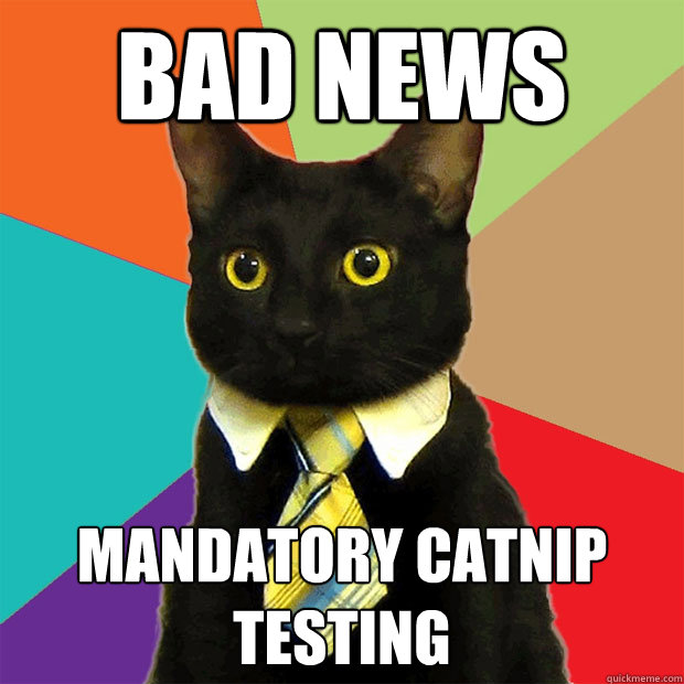 bad news mandatory catnip testing - Business Cat