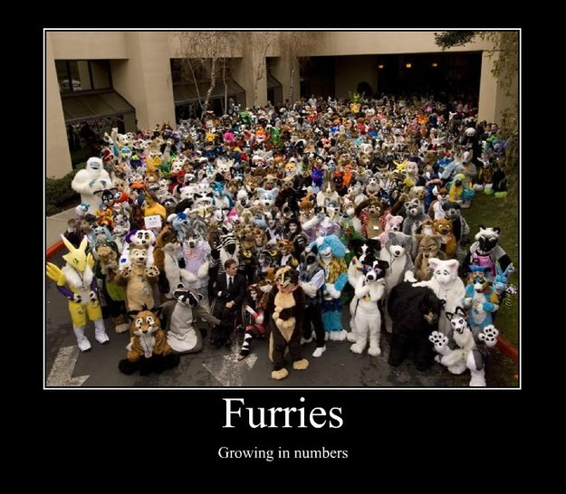 furries growing in numbers - Random Poster